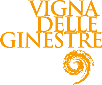 VDG-Logo-yellow